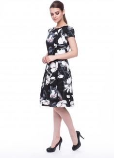 Women dress Jasmine-4